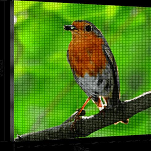 Экран Р10